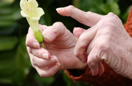 Природные средства при артрите рук